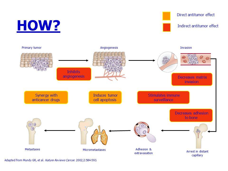 HOW? Adapted from Mundy GR, et al. Nature Reviews Cancer. 2002;2:584-593. InvasionAngiogenesisPrimary tumor MetastasesAdhesion & extravasation Arrest