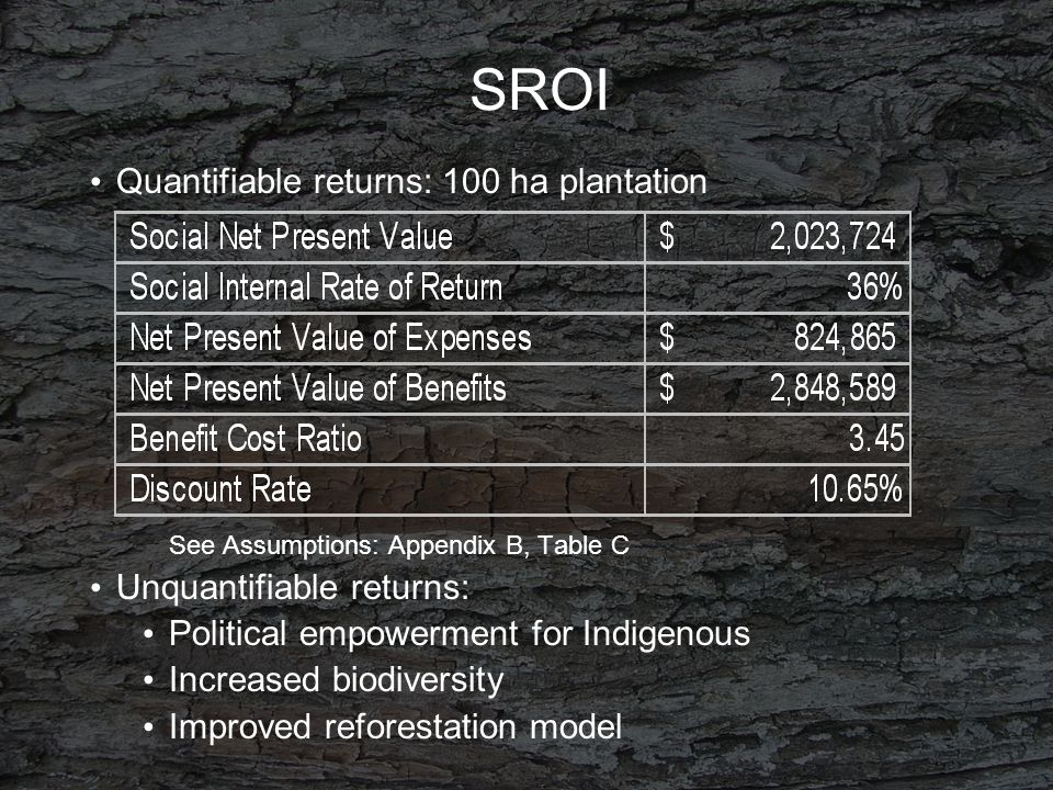 SROI Quantifiable returns: 100 ha plantation See Assumptions: Appendix B, Table C Unquantifiable returns: Political empowerment for Indigenous Increased biodiversity Improved reforestation model