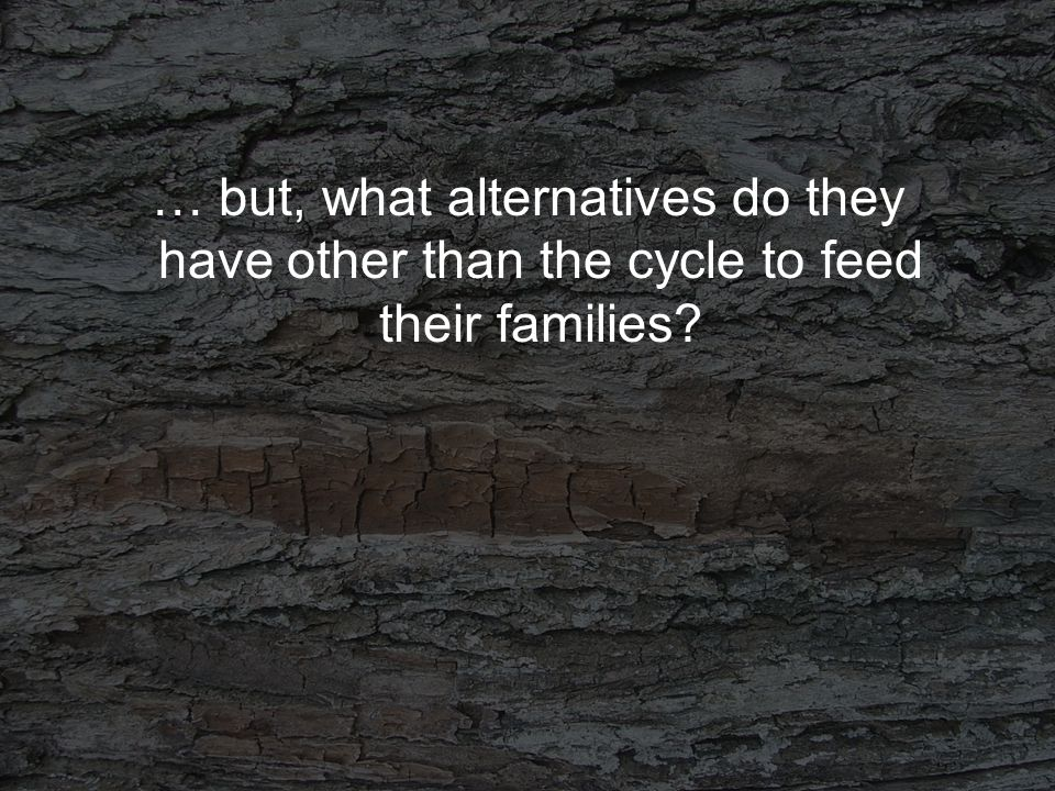 … but, what alternatives do they have other than the cycle to feed their families