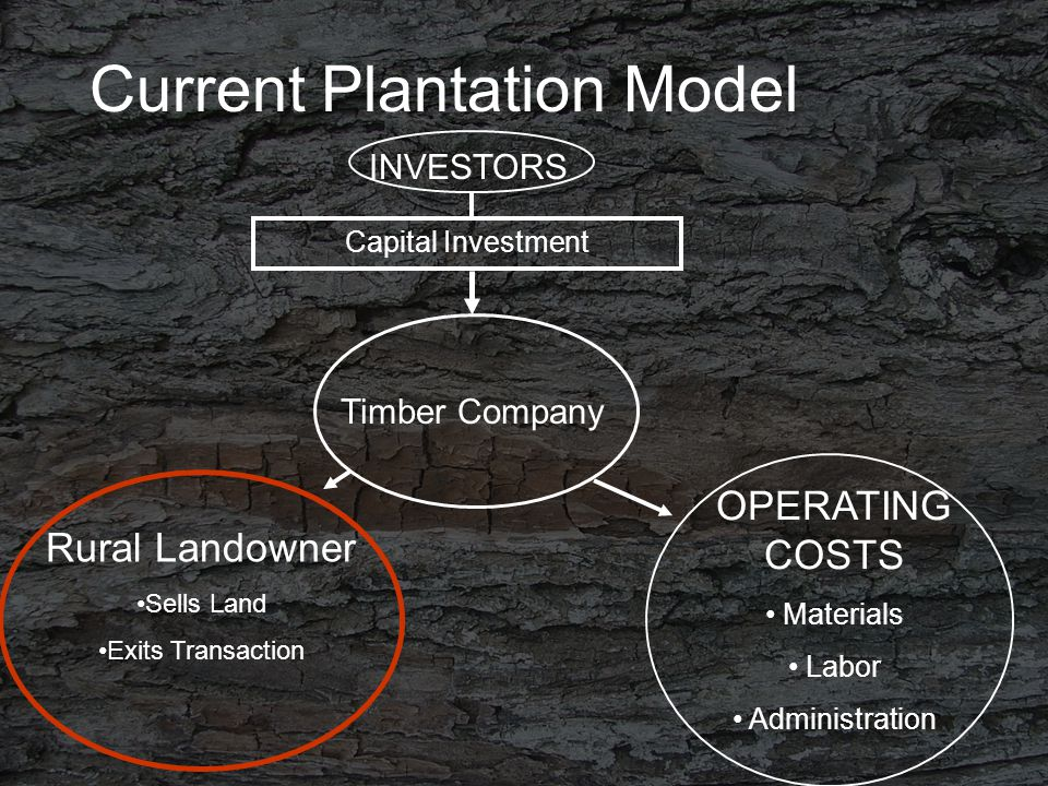 Current Plantation Model INVESTORS Timber Company Rural Landowner Sells Land Exits Transaction OPERATING COSTS Materials Labor Administration Capital Investment