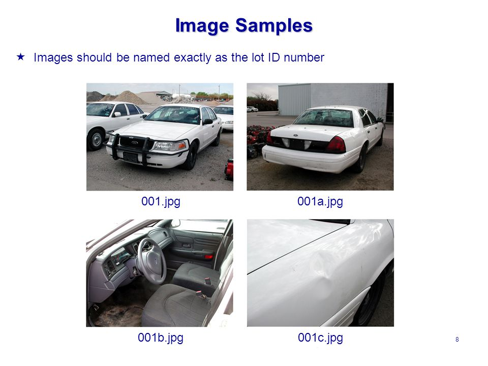 8 Image Samples  Images should be named exactly as the lot ID number 001.jpg001a.jpg 001b.jpg001c.jpg