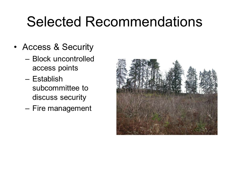 Selected Recommendations Access & Security –Block uncontrolled access points –Establish subcommittee to discuss security –Fire management