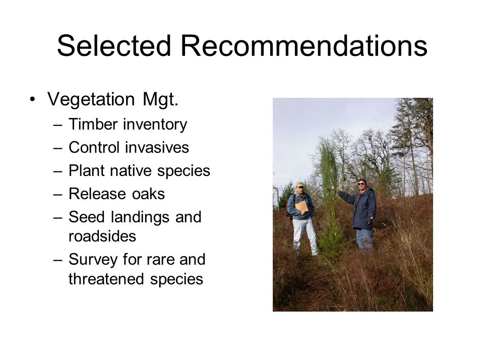 Selected Recommendations Vegetation Mgt.