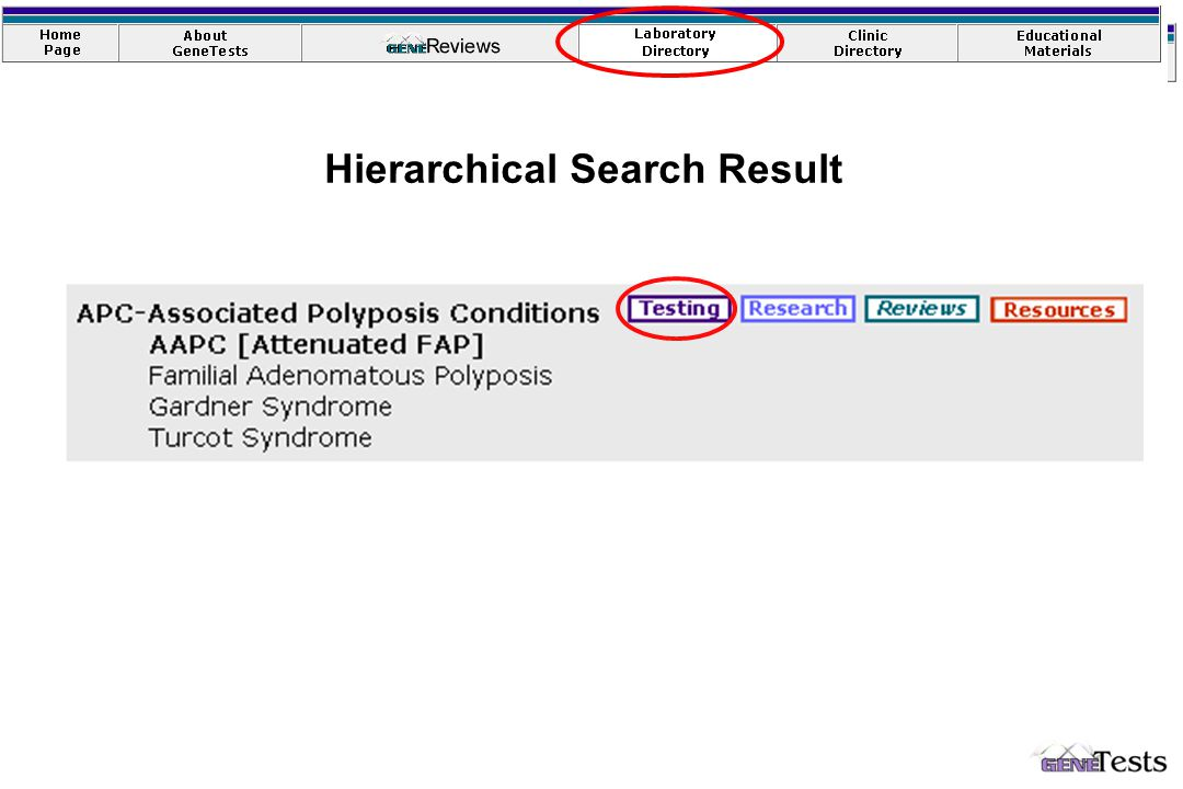 Hierarchical Search Result