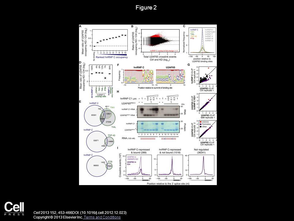Figure 2 Cell 2013 152, 453-466DOI: (10.1016/j.cell.2012.12.023) Copyright © 2013 Elsevier Inc.