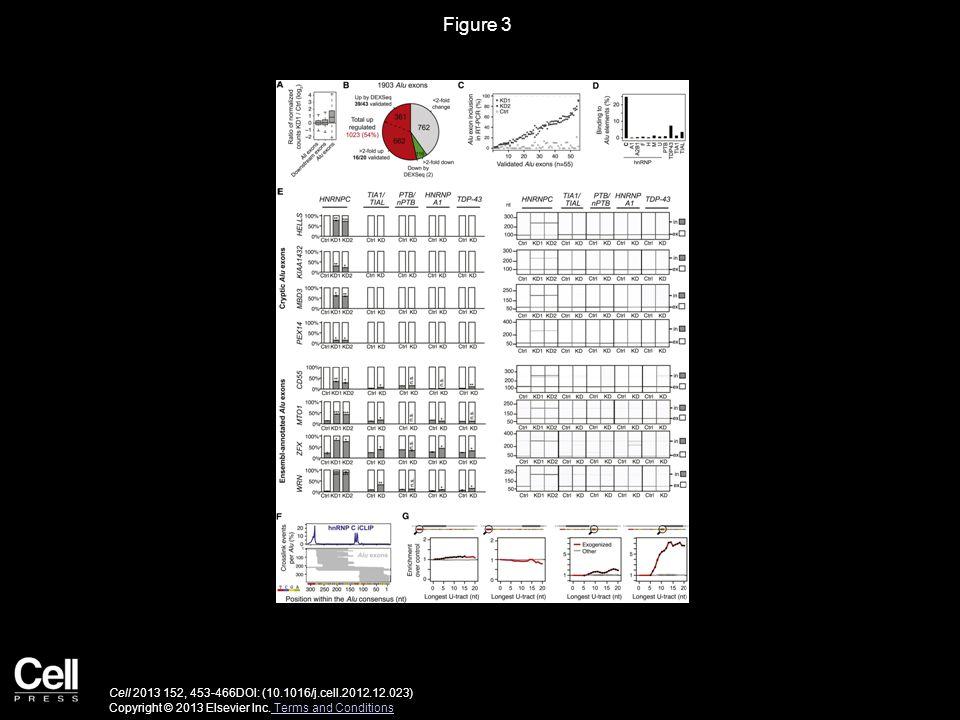 Figure 3 Cell 2013 152, 453-466DOI: (10.1016/j.cell.2012.12.023) Copyright © 2013 Elsevier Inc.