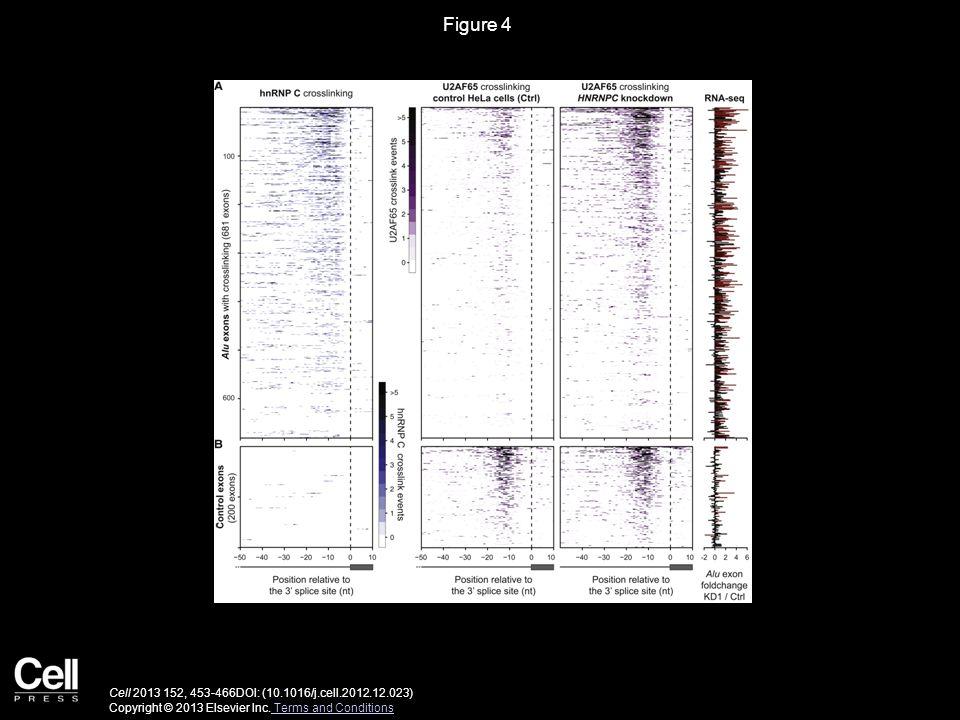Figure 4 Cell 2013 152, 453-466DOI: (10.1016/j.cell.2012.12.023) Copyright © 2013 Elsevier Inc.