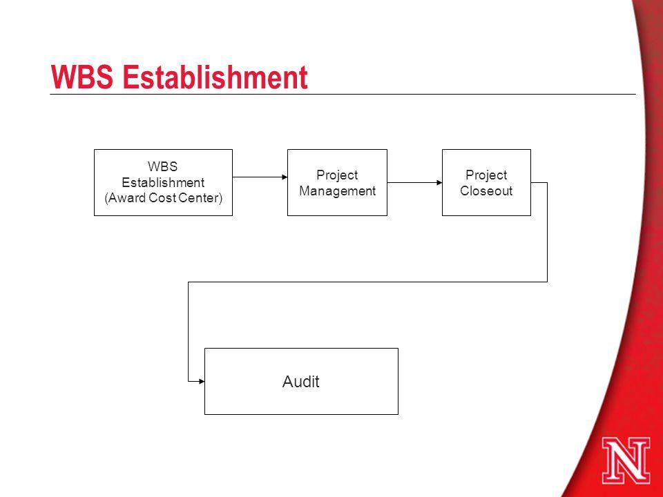 WBS Establishment WBS Establishment (Award Cost Center) Project Management Project Closeout Audit