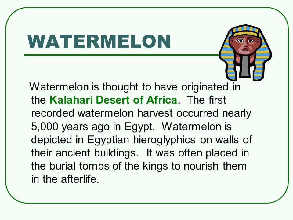WATERMELON Watermelon is thought to have originated in the Kalahari Desert of Africa. The first recorded watermelon harvest occurred nearly 5,000 year