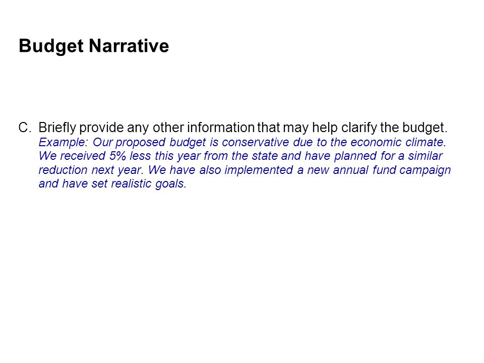 Budget Narrative C.Briefly provide any other information that may help clarify the budget.