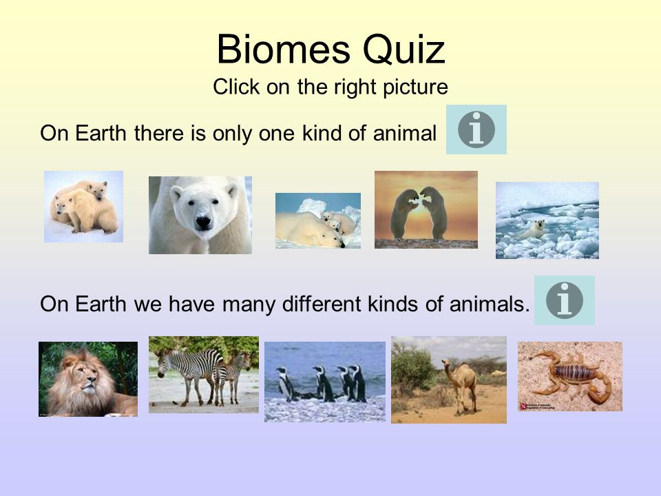 Biome Quiz Click on the right picture Every place on Earth: Looks the same Looks different