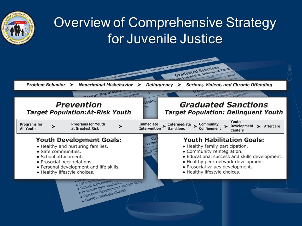 Overview of Comprehensive Strategy for Juvenile Justice