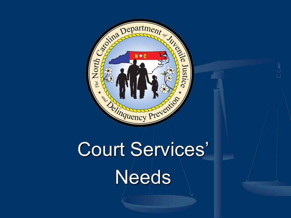 Court Services' Needs