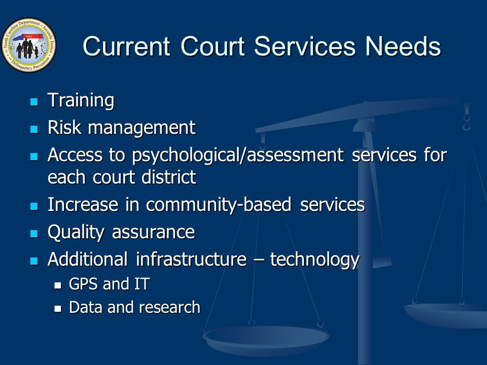 Current Court Services Needs Training Training Risk management Risk management Access to psychological/assessment services for each court district Access to psychological/assessment services for each court district Increase in community-based services Increase in community-based services Quality assurance Quality assurance Additional infrastructure – technology Additional infrastructure – technology GPS and IT GPS and IT Data and research Data and research