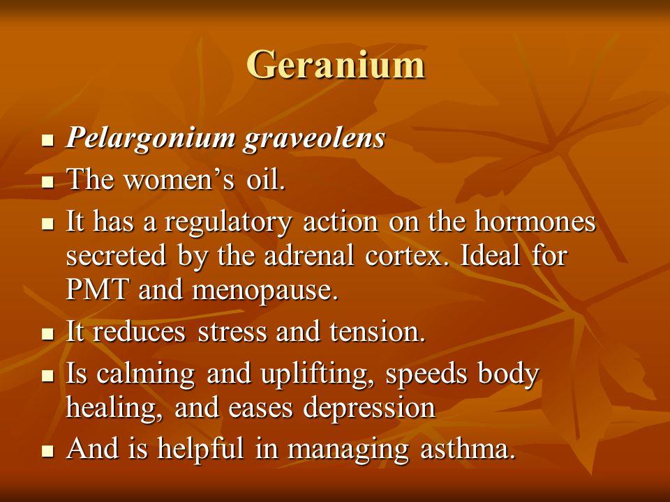 Geranium Pelargonium graveolens Pelargonium graveolens The women's oil. The women's oil. It has a regulatory action on the hormones secreted by the ad