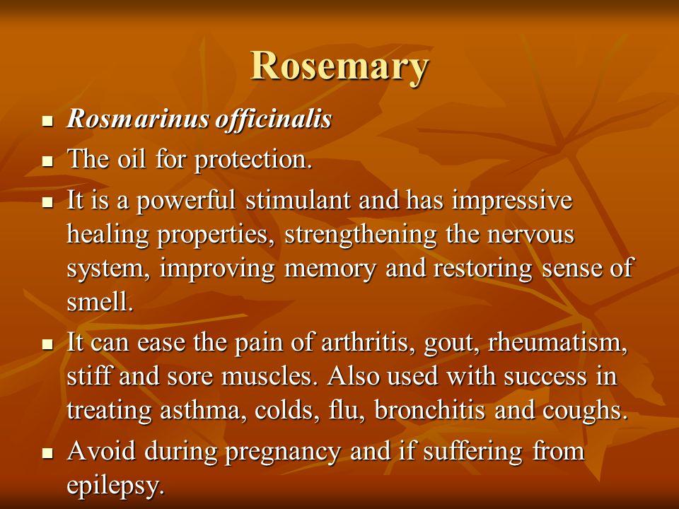 Rosemary Rosmarinus officinalis Rosmarinus officinalis The oil for protection. The oil for protection. It is a powerful stimulant and has impressive h