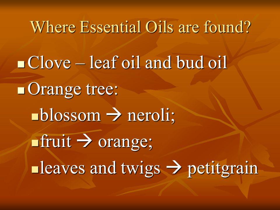 Where Essential Oils are found? Clove – leaf oil and bud oil Clove – leaf oil and bud oil Orange tree: Orange tree: blossom  neroli; blossom  neroli
