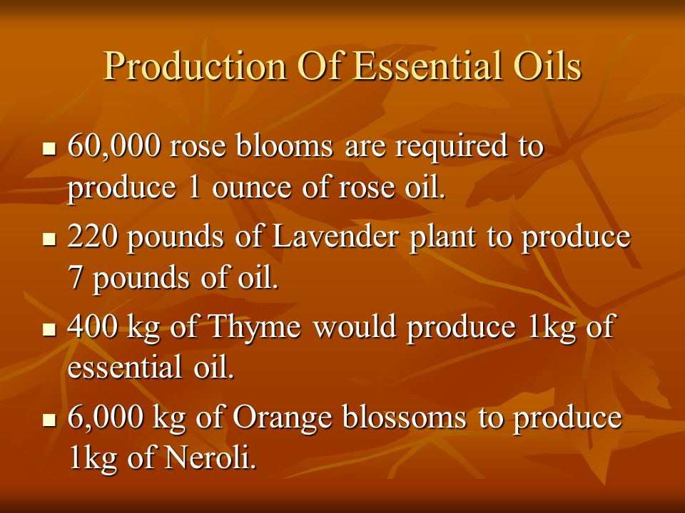 Production Of Essential Oils 60,000 rose blooms are required to produce 1 ounce of rose oil. 60,000 rose blooms are required to produce 1 ounce of ros