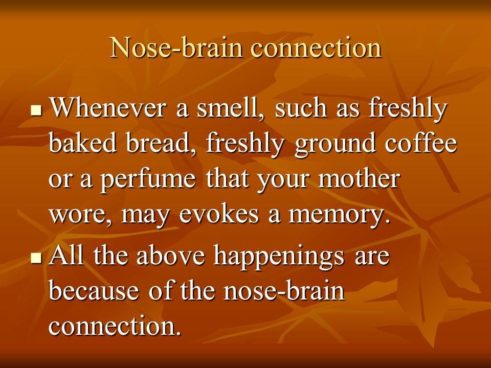 Nose-brain connection Whenever a smell, such as freshly baked bread, freshly ground coffee or a perfume that your mother wore, may evokes a memory. Wh