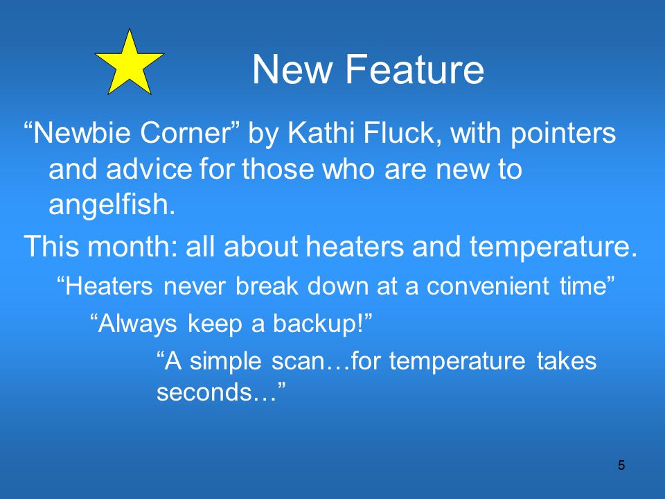 "5 New Feature ""Newbie Corner"" by Kathi Fluck, with pointers and advice for those who are new to angelfish. This month: all about heaters and temperatu"