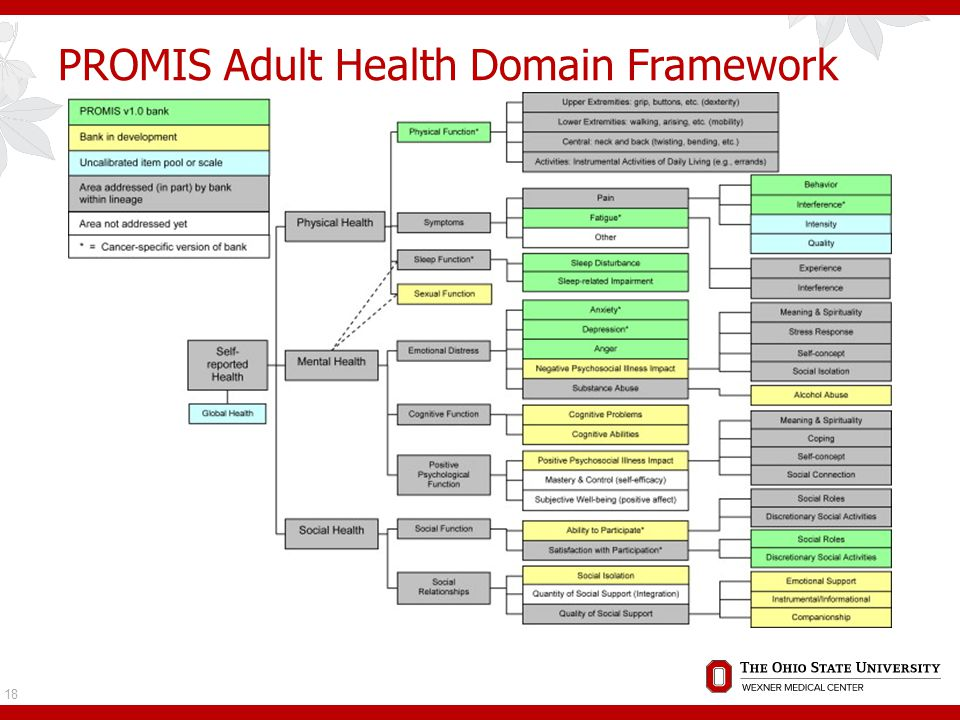 PROMIS Adult Health Domain Framework 18