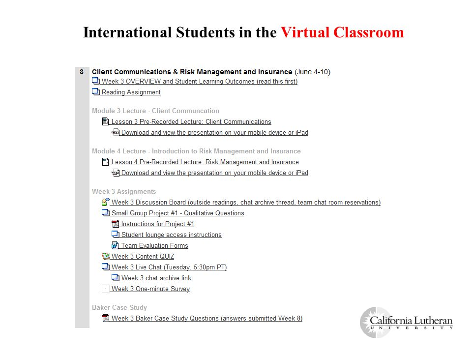 International Students in the Virtual Classroom
