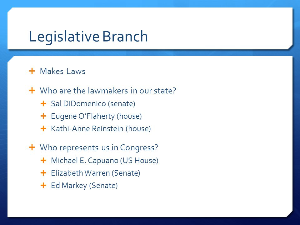 Legislative Branch  Makes Laws  Who are the lawmakers in our state.