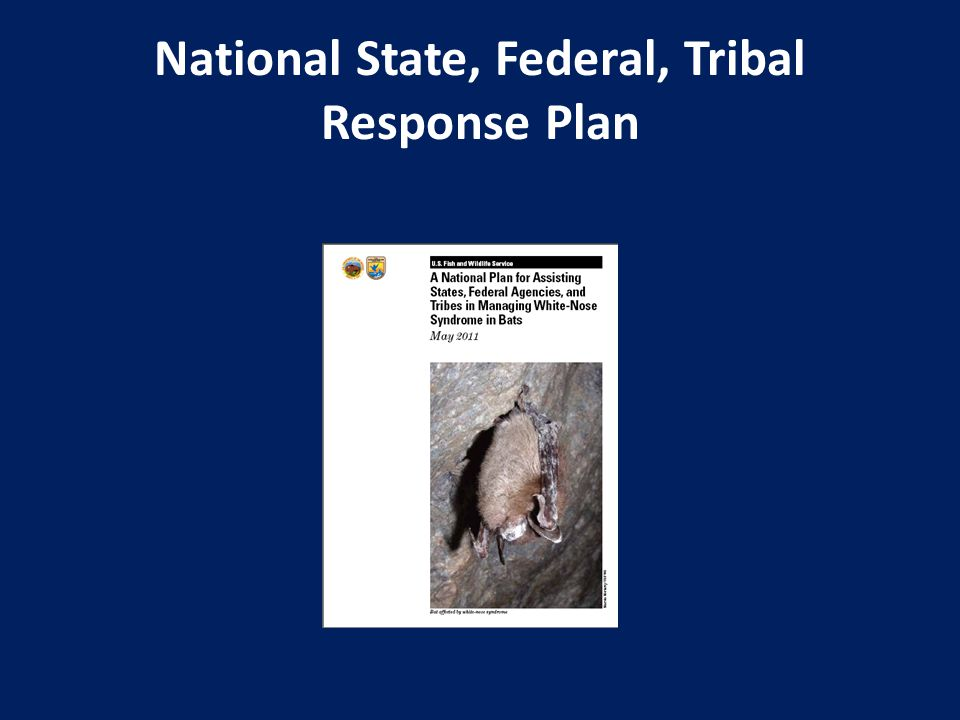 National State, Federal, Tribal Response Plan