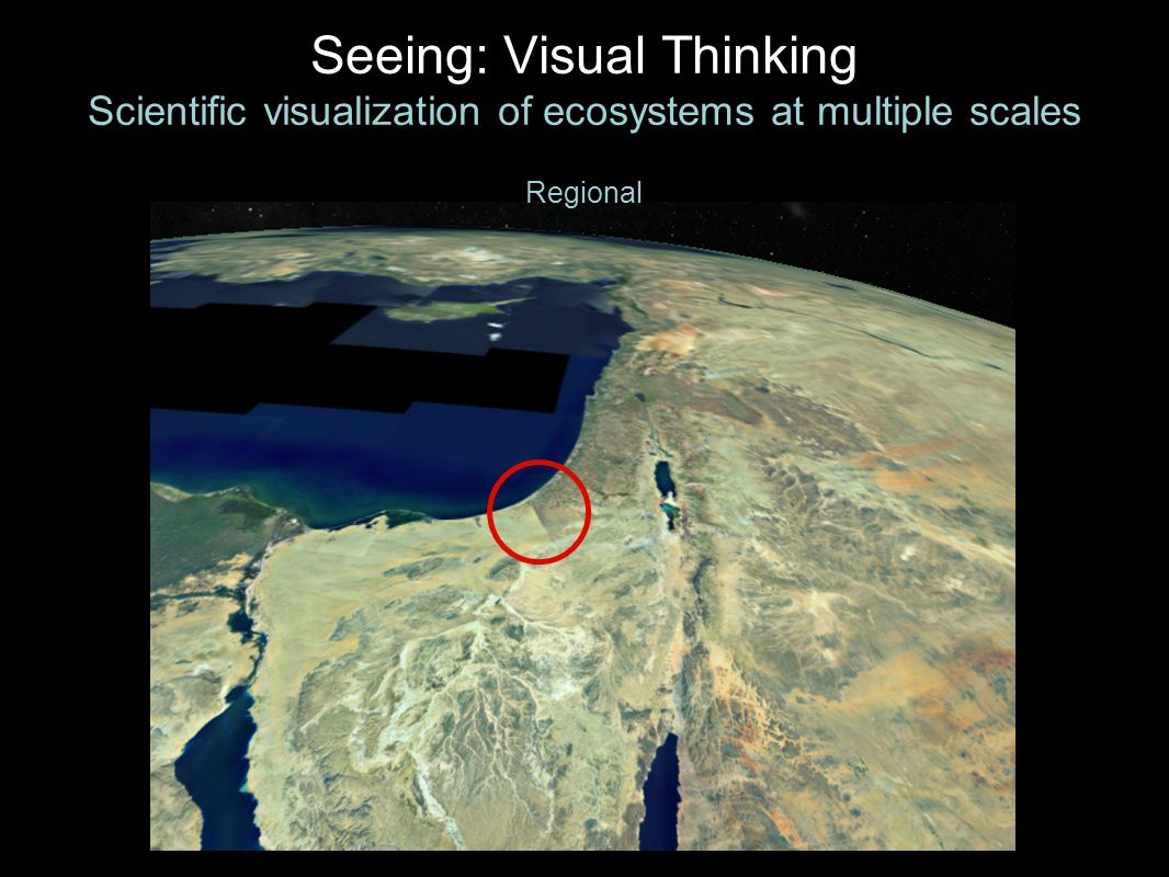 Seeing: Visual Thinking Scientific visualization of ecosystems at multiple scales Regional