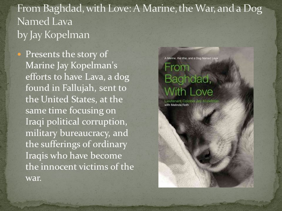 Presents the story of Marine Jay Kopelman s efforts to have Lava, a dog found in Fallujah, sent to the United States, at the same time focusing on Iraqi political corruption, military bureaucracy, and the sufferings of ordinary Iraqis who have become the innocent victims of the war.