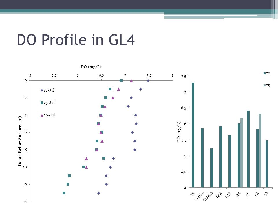DO Profile in GL4