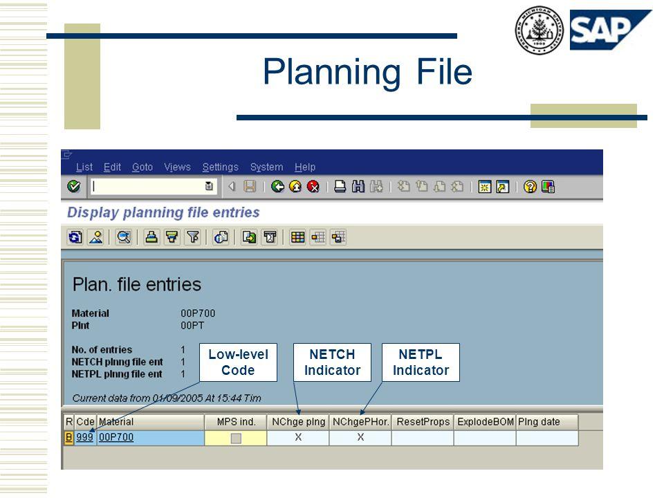 Planning File Low-level Code NETCH Indicator NETPL Indicator