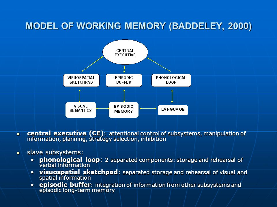 MODEL OF WORKING MEMORY (BADDELEY, 2000) central executive (CE): attentional control of subsystems, manipulation of information, planning, strategy selection, inhibition central executive (CE): attentional control of subsystems, manipulation of information, planning, strategy selection, inhibition slave subsystems: slave subsystems: phonological loop: 2 separated components: storage and rehearsal of verbal information visuospatial sketchpad : separated storage and rehearsal of visual and spatial information episodic buffer : integration of information from other subsystems and episodic long-term memory