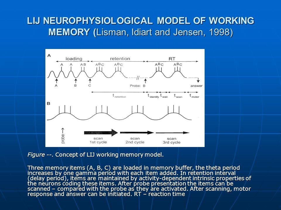 LIJ NEUROPHYSIOLOGICAL MODEL OF WORKING MEMORY (Lisman, Idiart and Jensen, 1998) Figure --.