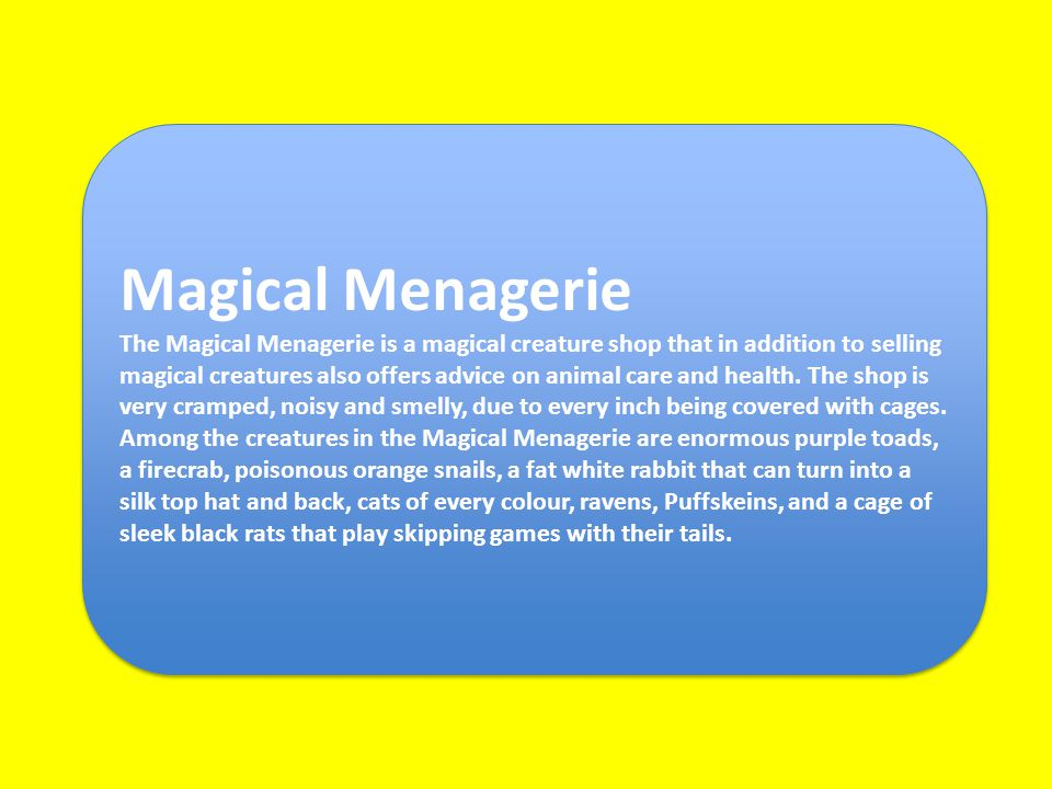 Magical Menagerie The Magical Menagerie is a magical creature shop that in addition to selling magical creatures also offers advice on animal care and health.