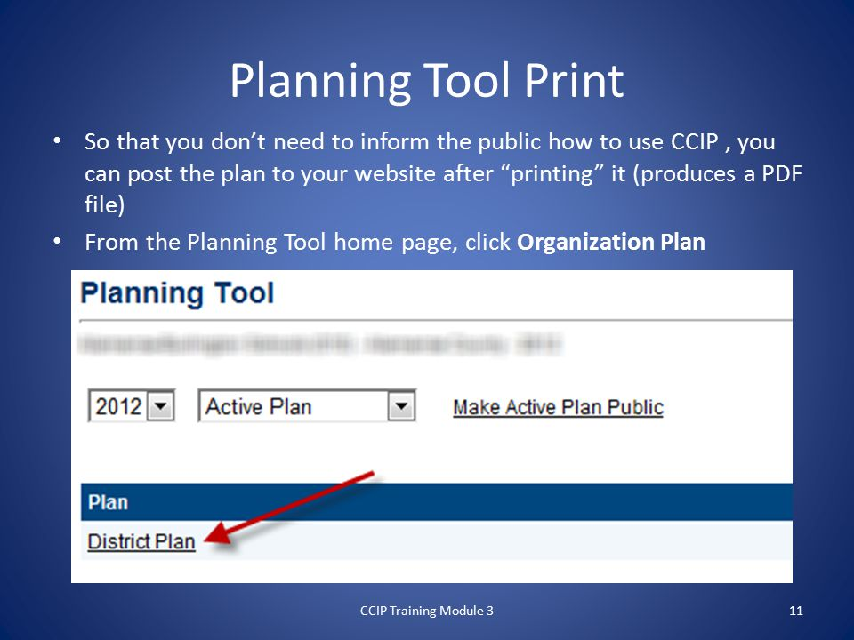 Planning Tool Print So that you don't need to inform the public how to use CCIP, you can post the plan to your website after printing it (produces a PDF file) From the Planning Tool home page, click Organization Plan CCIP Training Module 311