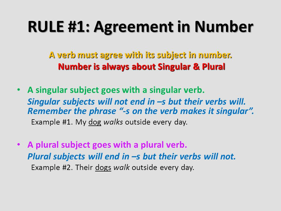 RULE #1: Agreement in Number A verb must agree with its subject in number. Number is always about Singular & Plural Number is always about Singular &