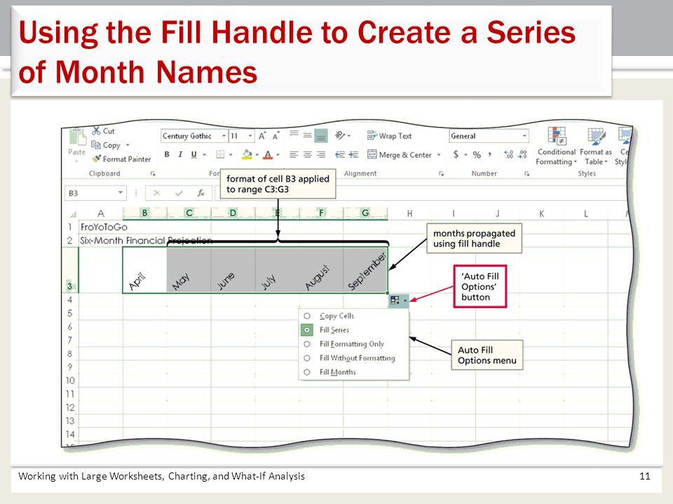 Working with Large Worksheets, Charting, and What-If Analysis11 Using the Fill Handle to Create a Series of Month Names