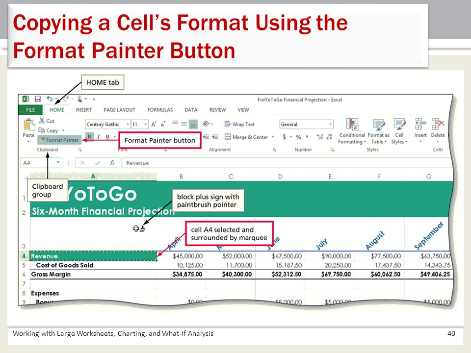 Working with Large Worksheets, Charting, and What-If Analysis40 Copying a Cell's Format Using the Format Painter Button