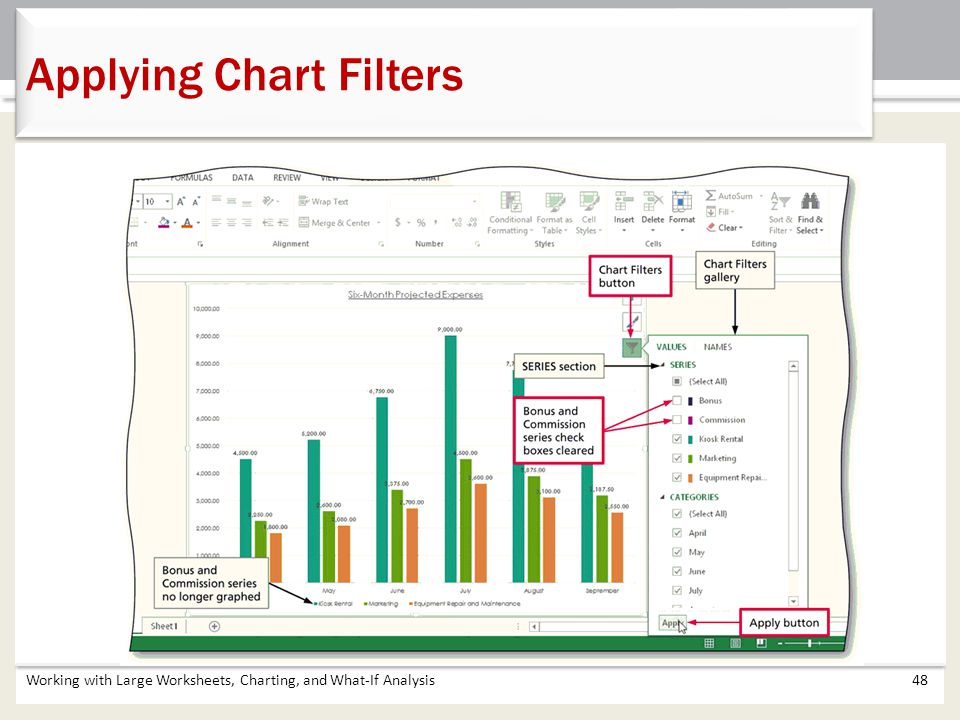 Working with Large Worksheets, Charting, and What-If Analysis48 Applying Chart Filters