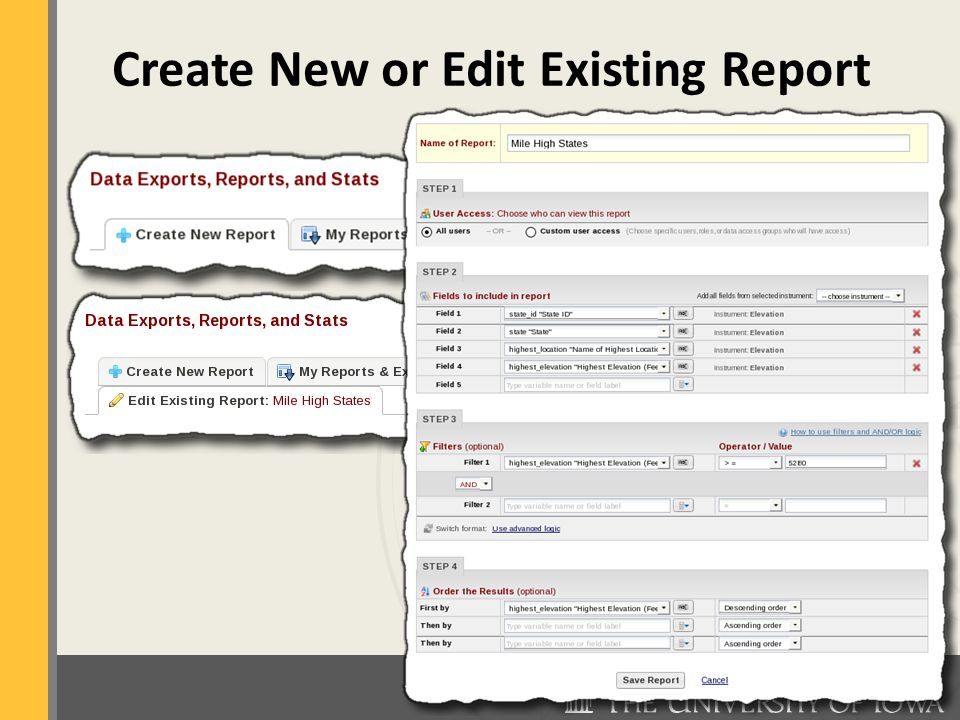 Create New or Edit Existing Report