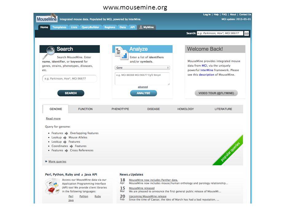 www.mousemine.org