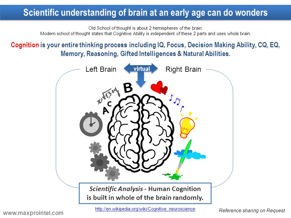 Left BrainRight Brain Scientific Analysis - Human Cognition is built in whole of the brain randomly. Cognition is your entire thinking process includi