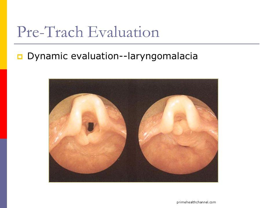 Pre-Trach Evaluation  Dynamic evaluation--laryngomalacia primehealthchannel.com