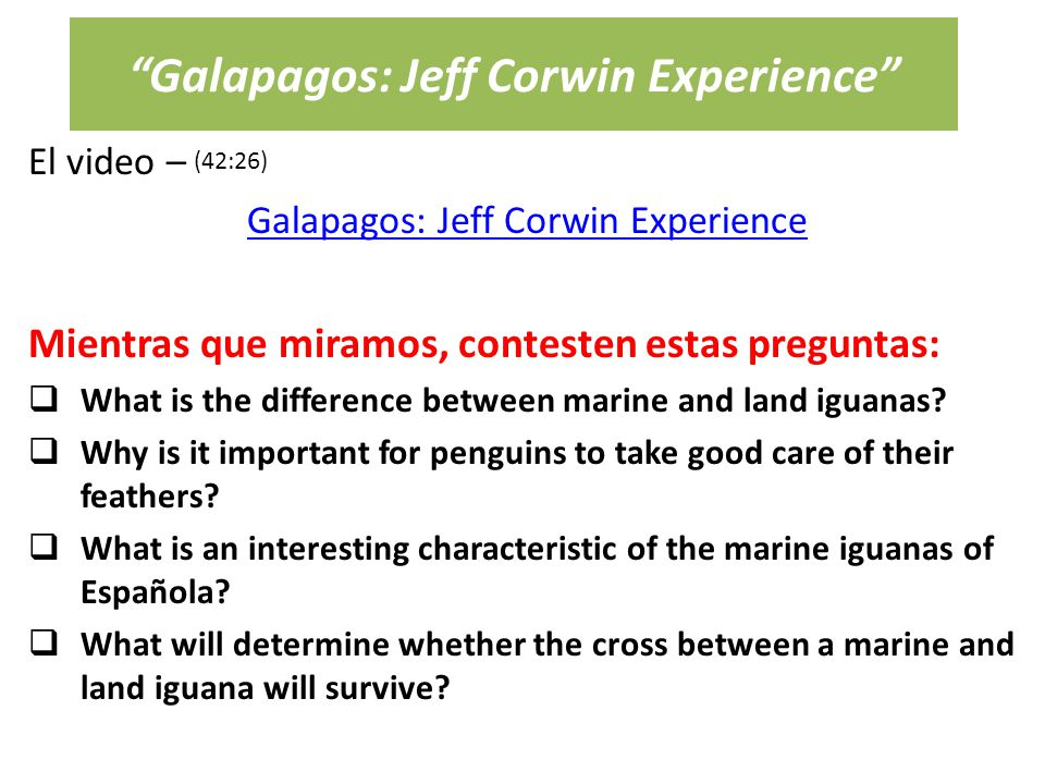 Galapagos: Jeff Corwin Experience El video – Galapagos: Jeff Corwin Experience Mientras que miramos, contesten estas preguntas:  What is the difference between marine and land iguanas.