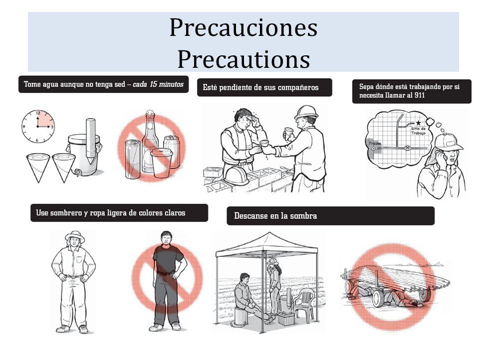 Precauciones Precautions
