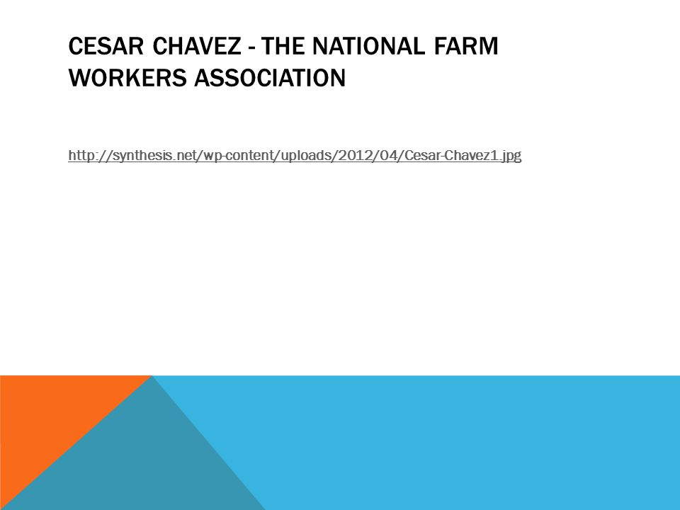 CESAR CHAVEZ - THE NATIONAL FARM WORKERS ASSOCIATION http://synthesis.net/wp-content/uploads/2012/04/Cesar-Chavez1.jpg