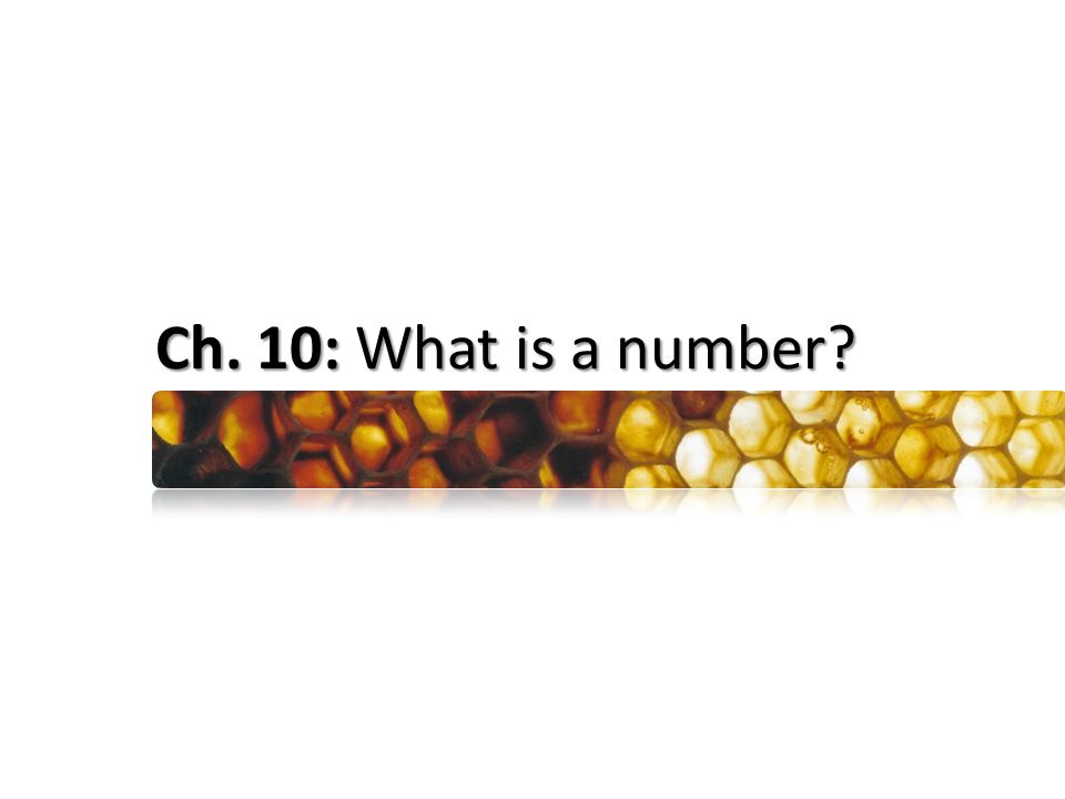 Ch. 10: What is a number