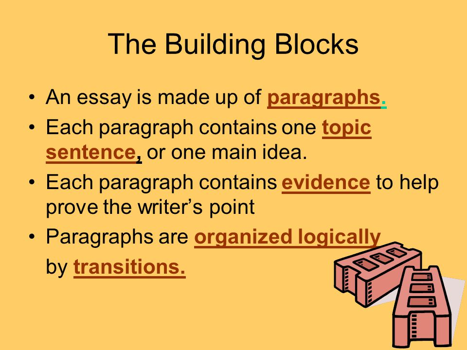 The Building Blocks An essay is made up of paragraphs.