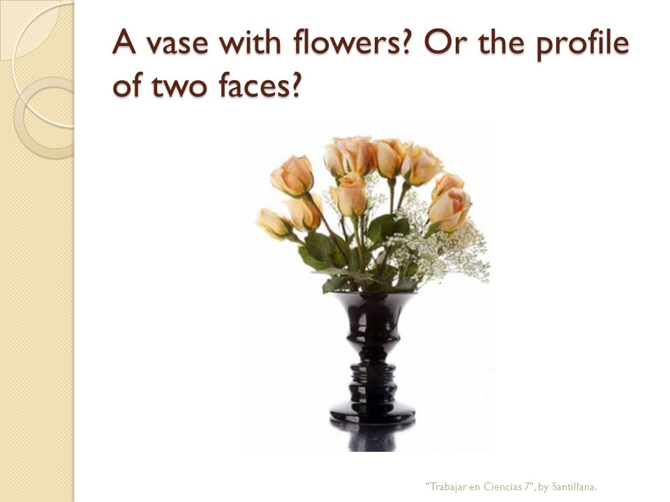 A vase with flowers Or the profile of two faces Trabajar en Ciencias 7 , by Santillana.